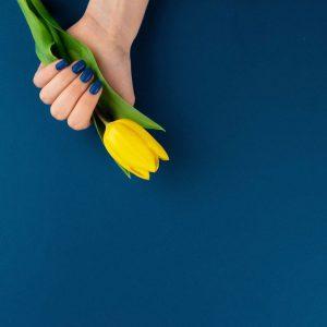 Blue basic color – 50/70 cm vinyl backdrop