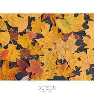 Fall leaves – 50/70 cm vinyl backdrop