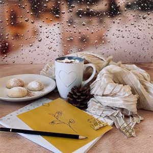 Rainy window – 50/70 cm vinyl backdrop